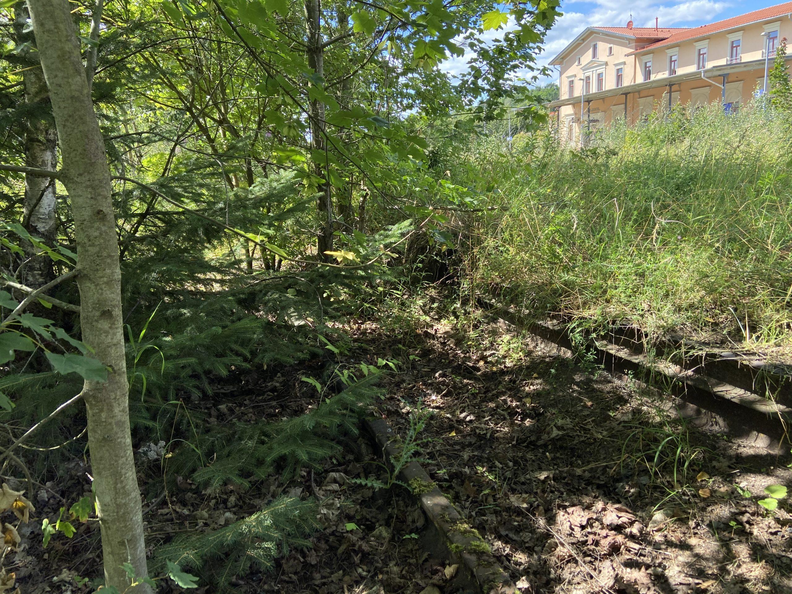 Gleise am ehemaligen KZ-Aussenlager Ellrich des KZ Buchenwald
